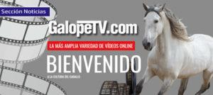 Lee más sobre el artículo GalopeTV.com, la nueva forma de ver y aprender Equitación