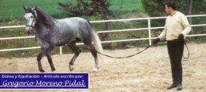 El potro en el campo por Gregorio Moreno Pidal