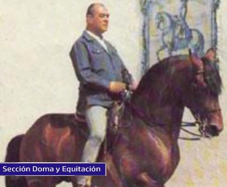La Doma y la memoria del caballo