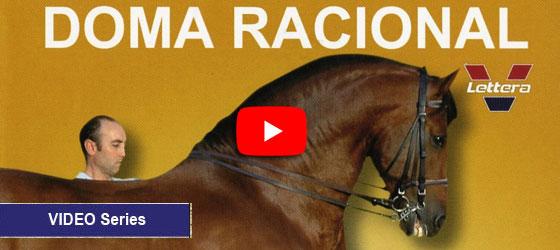 Doma Racional por Juan Rubio y Robert Stodulka
