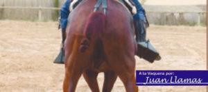 Pasos de costado vaqueros en ambos sentidos