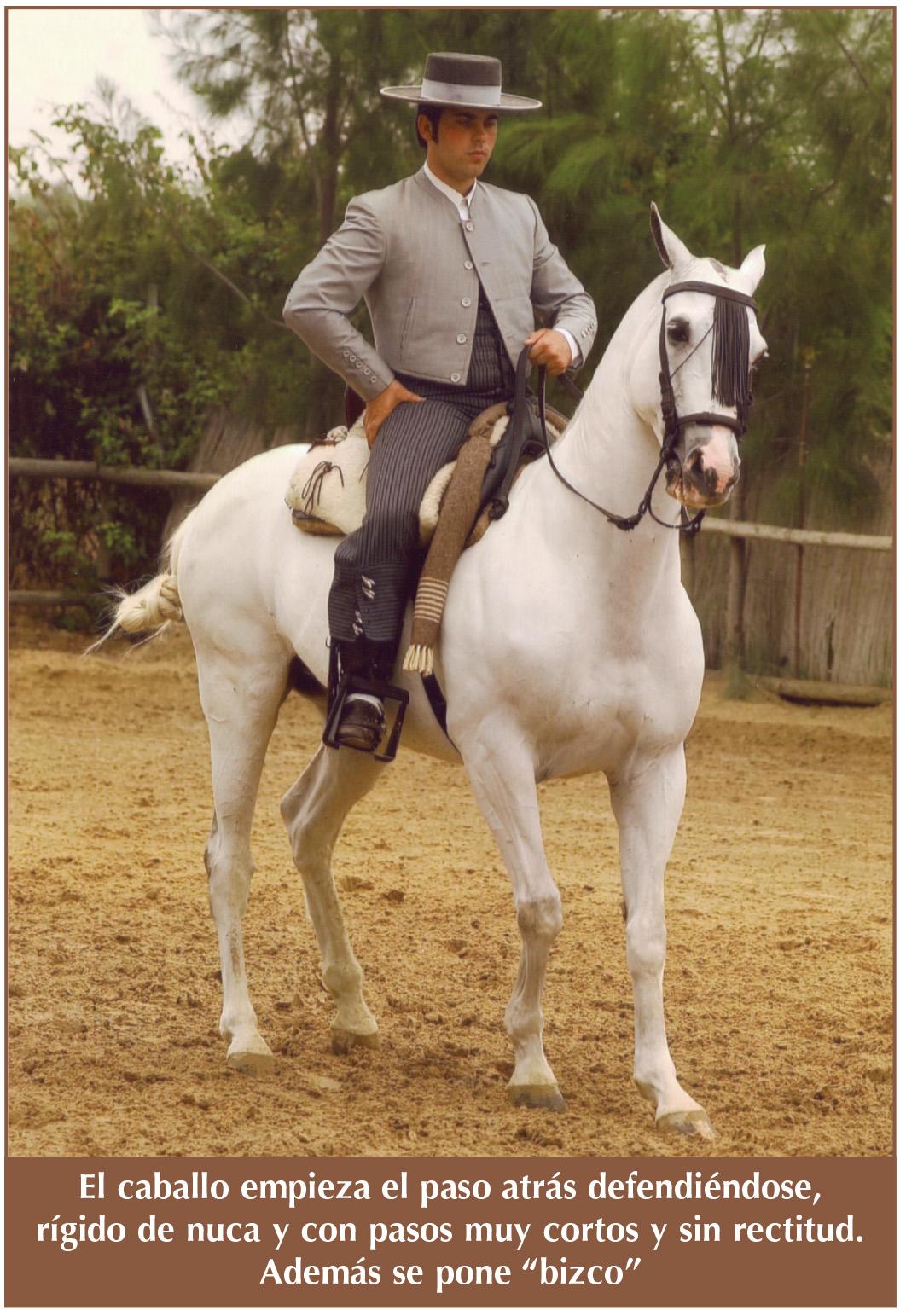 Juan Llamas 1