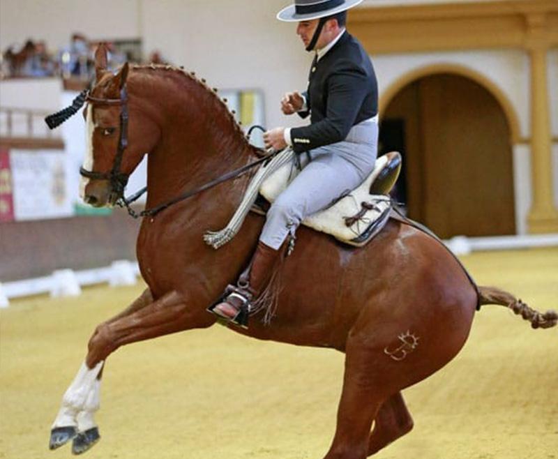 Lee más sobre el artículo Las vueltas sobre las piernas que hicieron campeón a Amador Martín