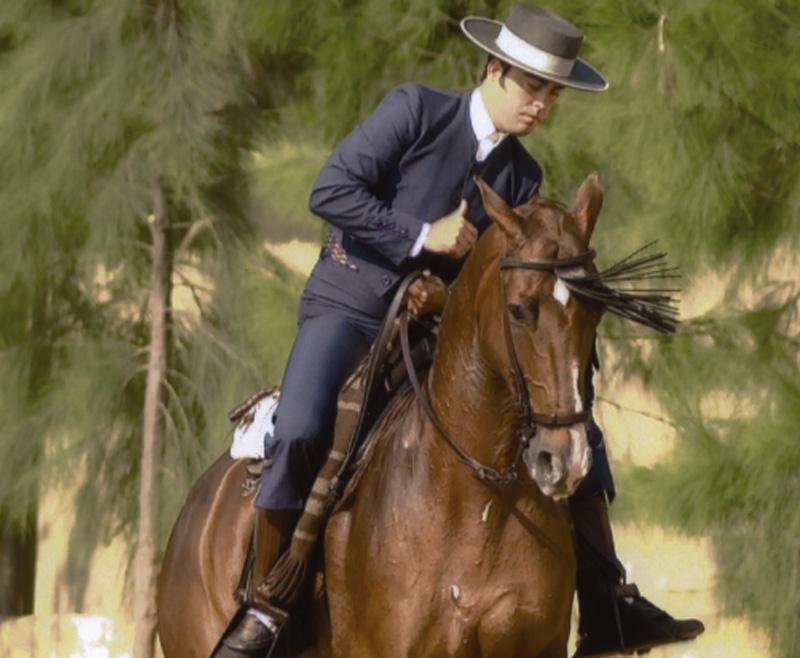 El equilibrio del caballo en los cambios de pie por derecho