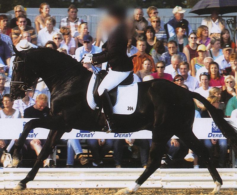 ¿Sabías que el dorso en tensión provoca el encapotamiento del caballo?