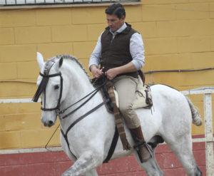 Un caballo ni se nos puede abrir ni se nos puede encapotar