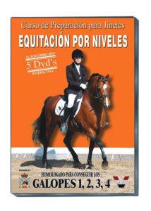 Equitación por niveles