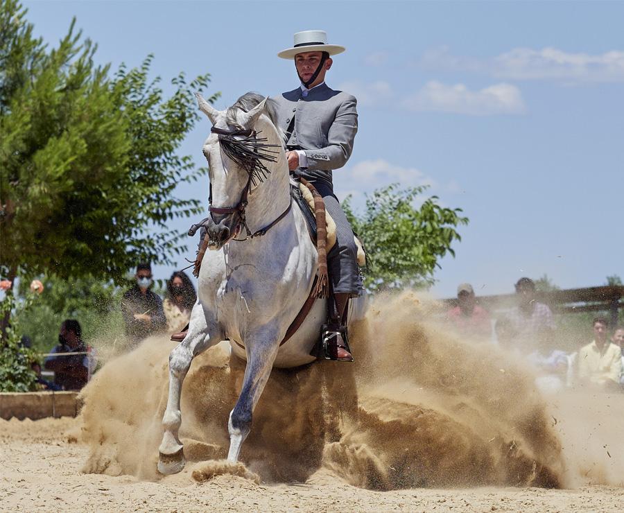 Éxito en Carmona en la apertura de temporada de competiciones de Doma Vaquera