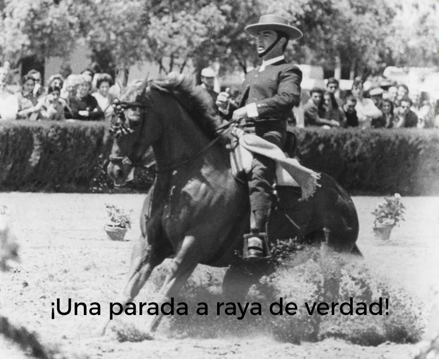 Lee más sobre el artículo Los jinetes de Doma Vaquera echan un pulso a la RFHE