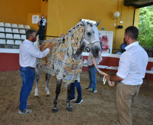 Lee más sobre el artículo Yeguada Cartuja y los Caballos del Vino de Caravaca unidos por la cultura del caballo