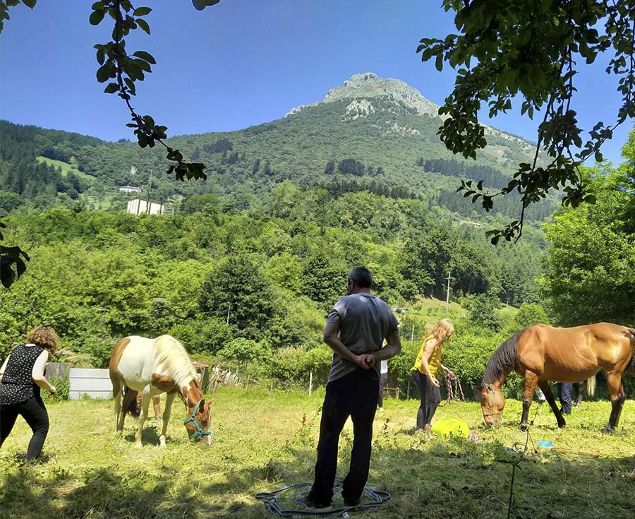 ¿Qué es el coaching con caballos y por qué funciona en el ámbito de las adicciones y la patología dual?