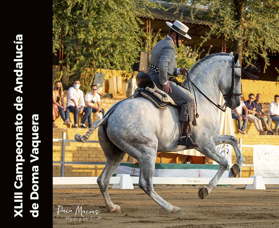 Lee más sobre el artículo Luis Fernando Benítez y Luar arrasaron en el XLIII Campeonato de Andalucía de Doma Vaquera