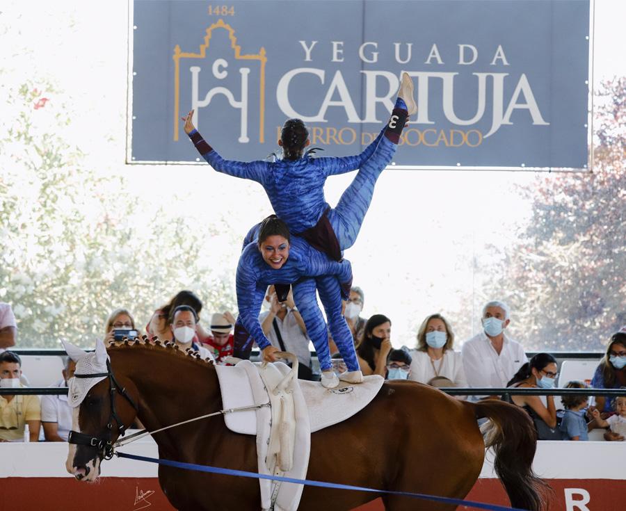 Lee más sobre el artículo Finaliza el IV Campeonato de España de Volteo con gran éxito de participación y público