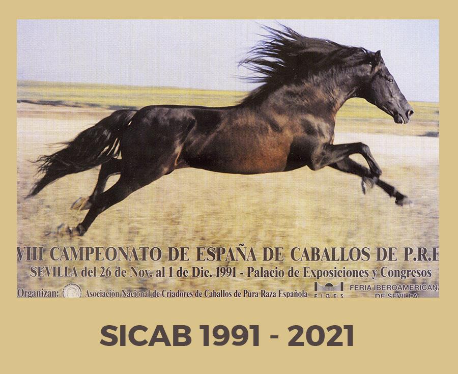 Lee más sobre el artículo ¿Cómo se puso en marcha SICAB en 1991?