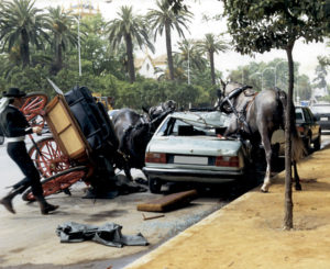 Lee más sobre el artículo Precauciones para evitar accidentes con caballos enganchados