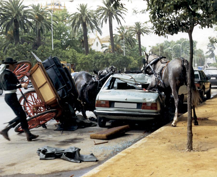 En este momento estás viendo Precauciones para evitar accidentes con caballos enganchados