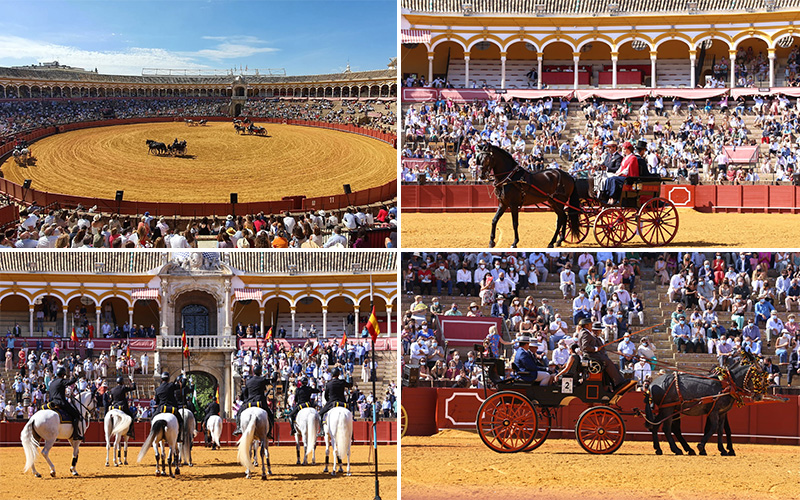Enganches en Sevilla