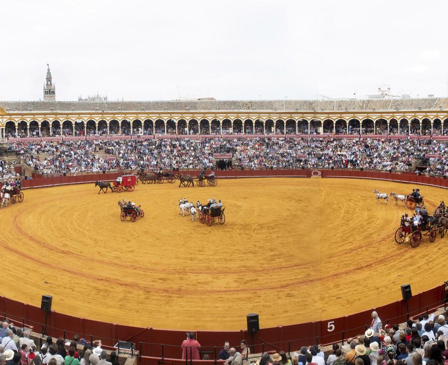 Lee más sobre el artículo Más de un centenar de Enganches en Sevilla los días 24, 25 y 26 de septiembre